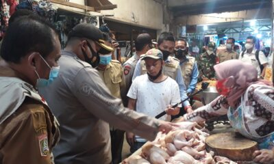 Harga Ayam Melonjak di Kabupaten Malang