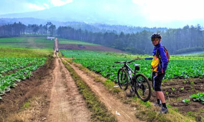 Bukit Jengkoang, Surganya Para Pesepeda dan Goweser Malang Raya