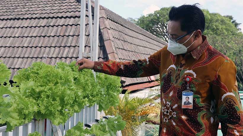 Tren Inflasi Volatile Food Kota Malang Naik, BI Dorong Urban Farming