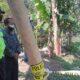 Pembunuhan Tajinan Malang, Polres Malang Temukan Petunjuk Baru